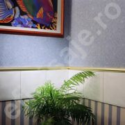 Listello maxi Prolux din aluminiu eloxat - DLA237